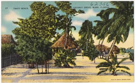 tahiti-beach-coral-gables-florida beach