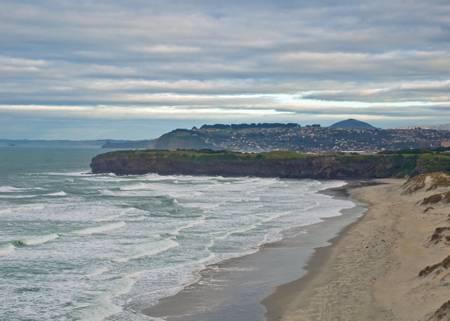 tomahawk-beach-dunedin beach