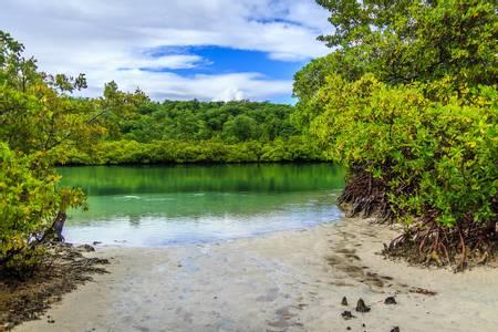 trou-cochon-le-vauclin-le-marin beach