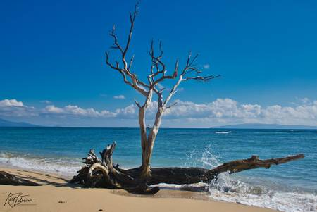ukumehame-beach-park-waikapu-hawaii beach