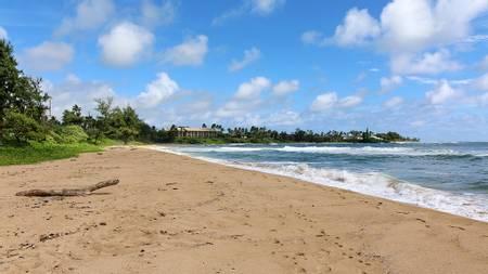 wailua-beach-wailua-hawaii beach