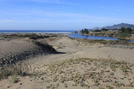 westport-union-landing-state-beach-hardy-california beach