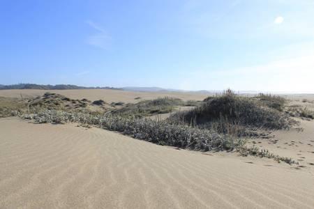 westport-union-landing-state-beach-westport-california beach