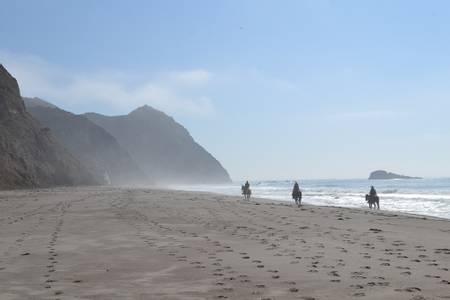 wildcat-beach-five-brooks-california beach