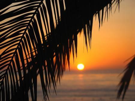 wipeout-beach-san-diego-california beach