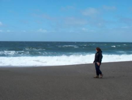 wright's-beach-sereno-del-mar-california beach