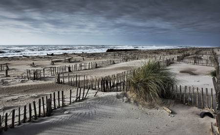 zone-naturiste-de-la-plage-de-pi%C3%A9manson-arles-provence-alpes-c%C3%B4te-dazur beach
