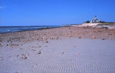 black-beach-falmouth-massachusetts beach