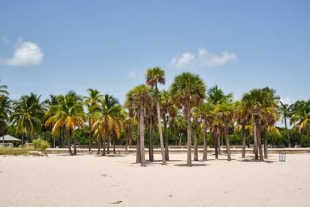 crandon-beach-key-biscayne-florida beach
