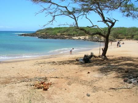 dixie-maru-maunaloa-hawaii beach