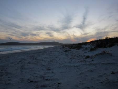 emu-beach-albany-western-australia beach