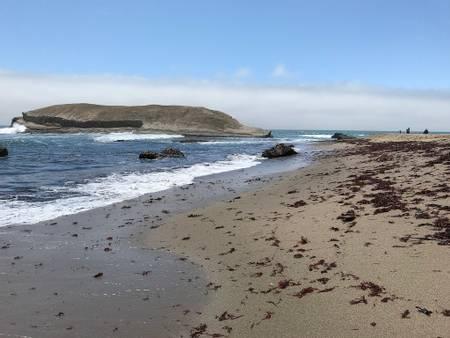 greyhound-rock-beach-swanton-california beach