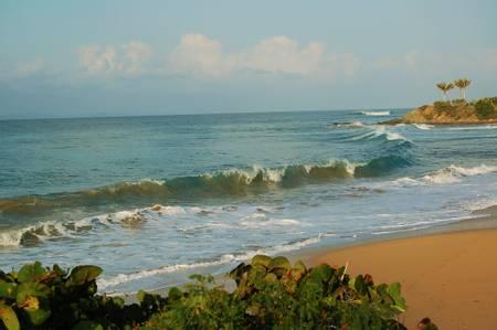 gringo-beach-florida-vieques-puerto-rico-vieques beach
