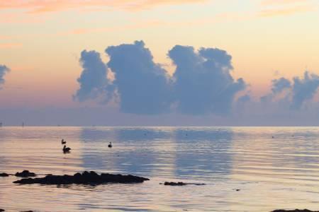 higgs-beach-key-west-florida beach