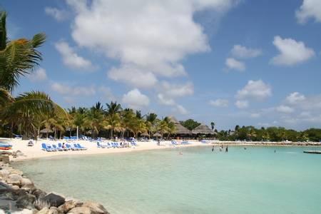 iguana-beach-oranjestad beach