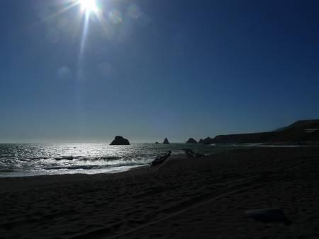 jenner-beach-jenner-california beach