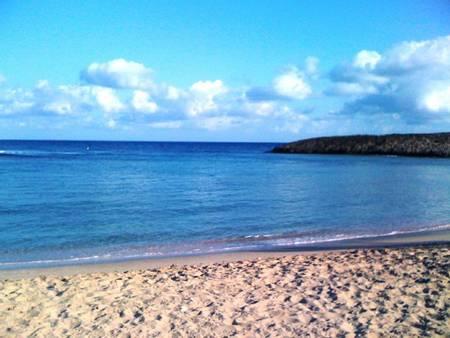 jobos-jobos-isabela-puerto-rico-isabela beach