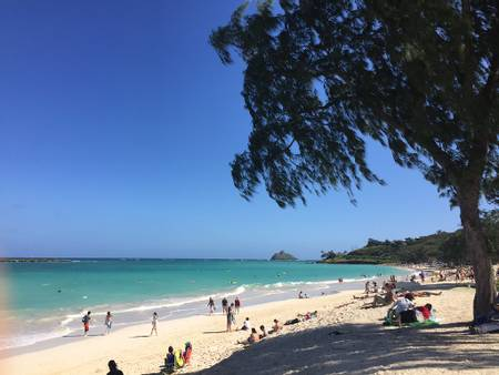 kailua-beach-kailua-hawaii beach