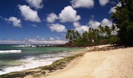 kawailoa-beach-koloa-hawaii beach