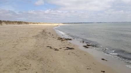 knoll-beach-studland-england beach