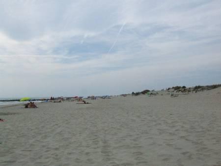 l'espiguette-le-grau-du-roi-occitanie beach