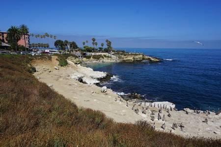 la-jolla-cove-san-diego-california beach