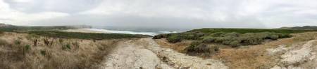 laguna-creek-beach-majors-california beach