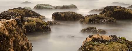 mcclures-beach-dillon-beach-california beach
