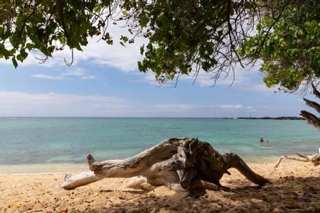 mahaiula-beach-kalaoa-hawaii beach