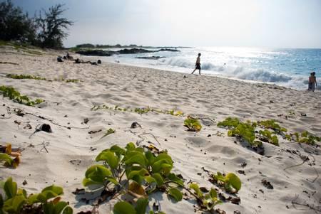 makalawena-beach-kalaoa-hawaii beach
