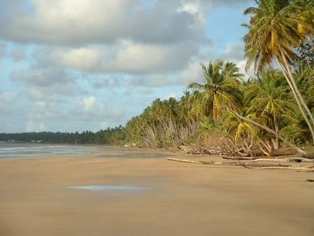 mayaro-beach-mayaro-mayaro-rio-claro-regional-corporation beach