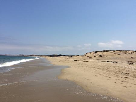 monterey-state-beach-monterey-california beach