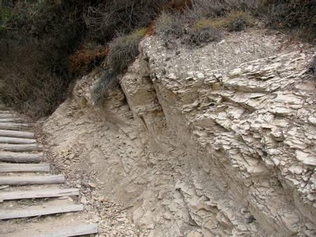 more-mesa-beach-goleta-california beach