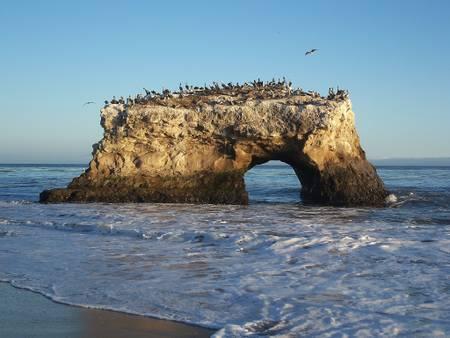 natural-bridges-state-beach-santa-cruz-california beach