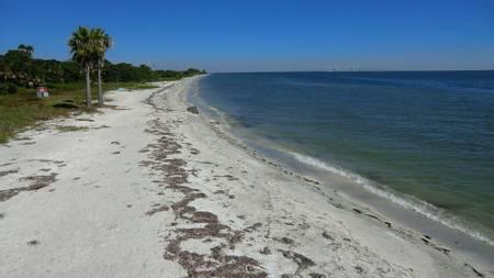 north-beach-tierra-verde-florida beach