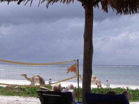 nyali-beach-greenwood-lane-mombasa beach
