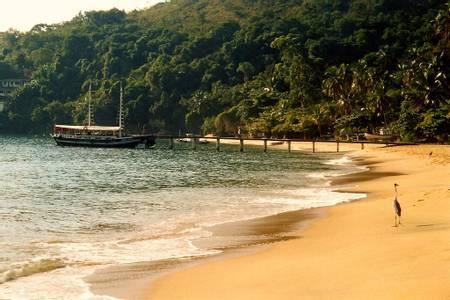 palmas-angra-dos-reis beach