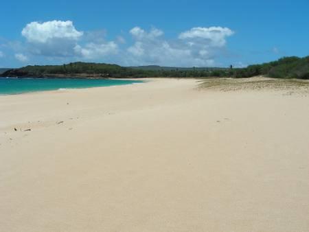 papohaku-beach-maunaloa-hawaii beach