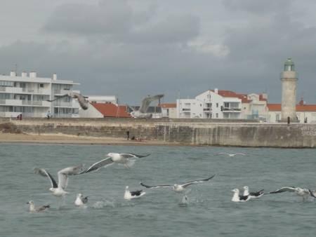 petite-plage-saint-gilles-croix-de-vie-pays-de-la-loire beach