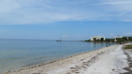 picnic-island-beach-tampa-florida beach