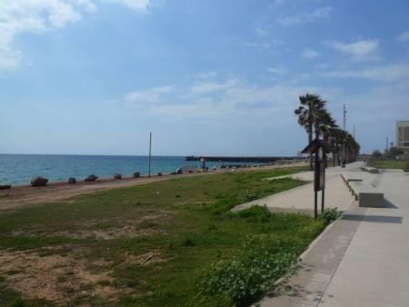 platja-de-la-mora-sant-adria-de-besos-catalonia beach