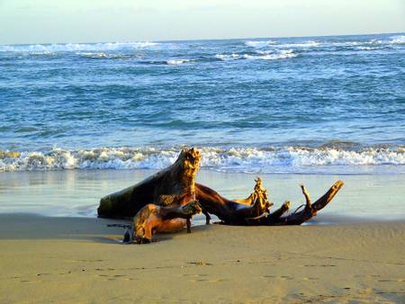 playa-dorada-puerto-plata-puerto-plata-province beach