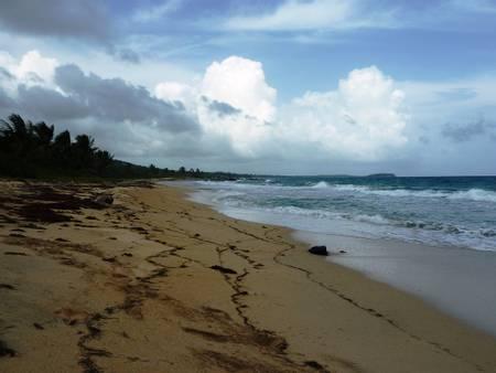 playa-grande-esperanza-vieques beach