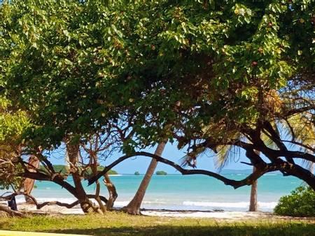 playa-los-machos-roosevelt-roads beach