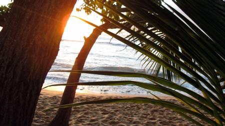 playa-maria-rincon-rincon beach