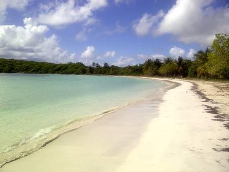 playa-media-luna-puerto-ferro-vieques beach