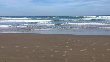 playa-miramar-ciudad-madero-tamaulipas beach