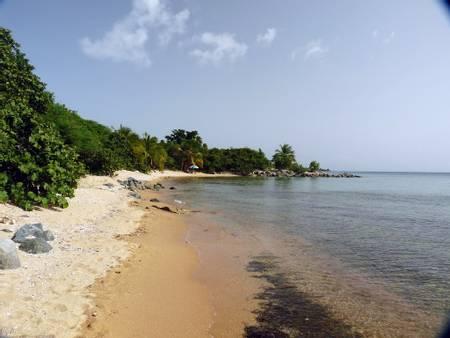playa-punta-arenas-florida-vieques-puerto-rico-vieques beach