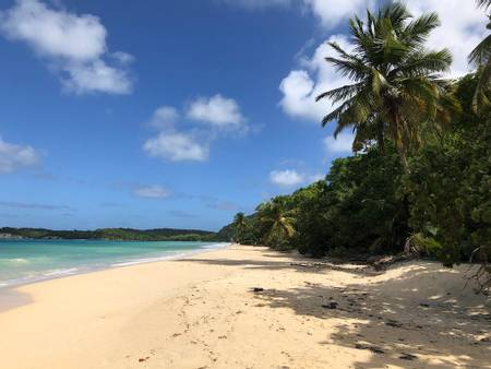 plage-de-folle-anse-saint-louis-grande-terre beach