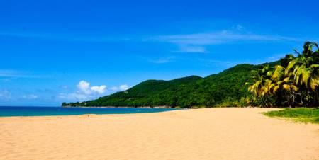 plage-de-grande-anse-deshaies beach